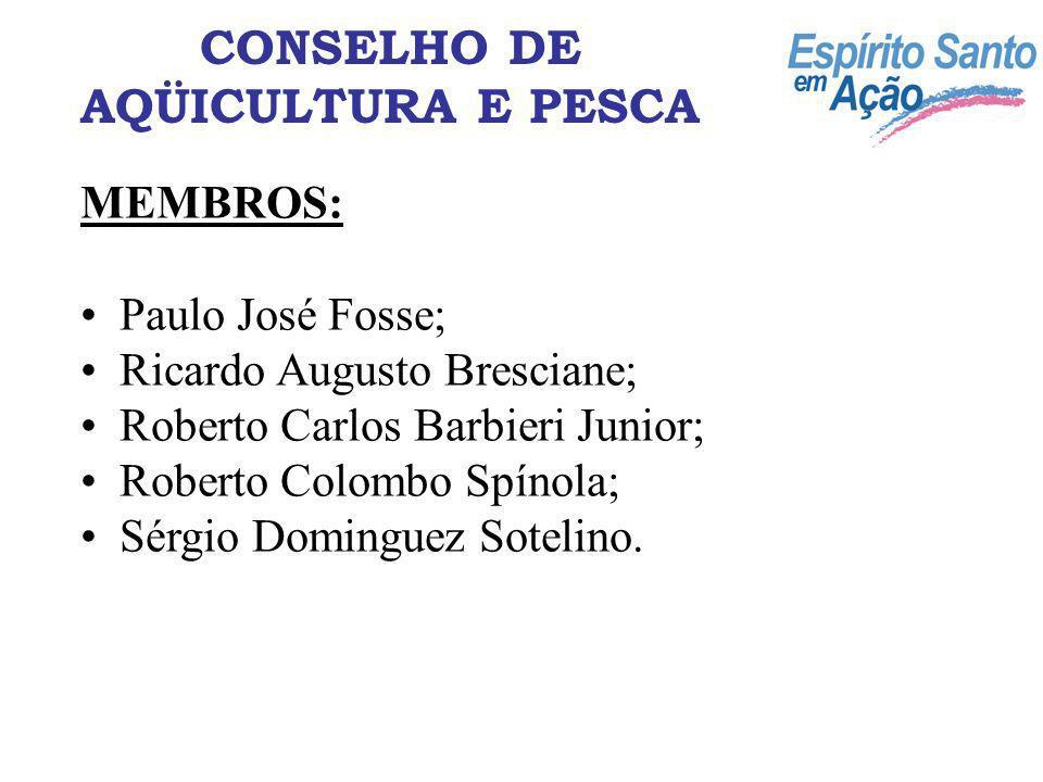 MEMBROS: Paulo José Fosse; Ricardo Augusto Bresciane; Roberto Carlos Barbieri Junior; Roberto Colombo Spínola; Sérgio Dominguez Sotelino. CONSELHO DE