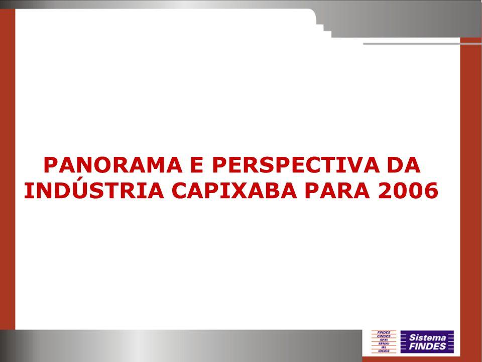 PANORAMA E PERSPECTIVA DA INDÚSTRIA CAPIXABA PARA 2006