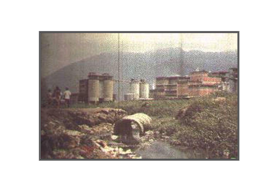 Alunado/Comunidade Proteção e sustentabilidade dos recursos naturais Ex: economia de energia, lixo doméstico (redução e formas de tratamento), coleta seletiva, etc.