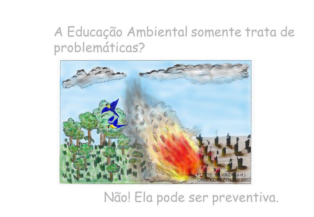 A Educação Ambiental somente trata de problemáticas? FONTE: SILVA/DF (s.d.) ORG: KOPEZYNSKI/ 2002 Não! Ela pode ser preventiva.