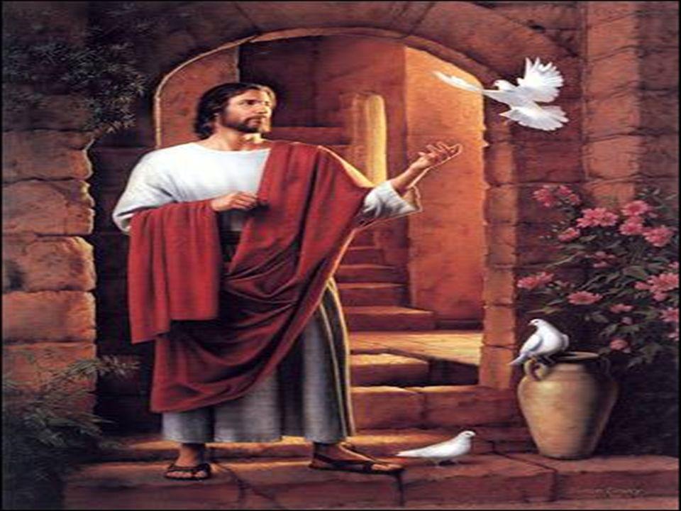 Creio em Ti Senhor, vindo de Maria. Filho eterno e Santo, homem como nós. Tu morrestes por amor, vivo estás em nós! Unidade Trina com o Espírito e o P