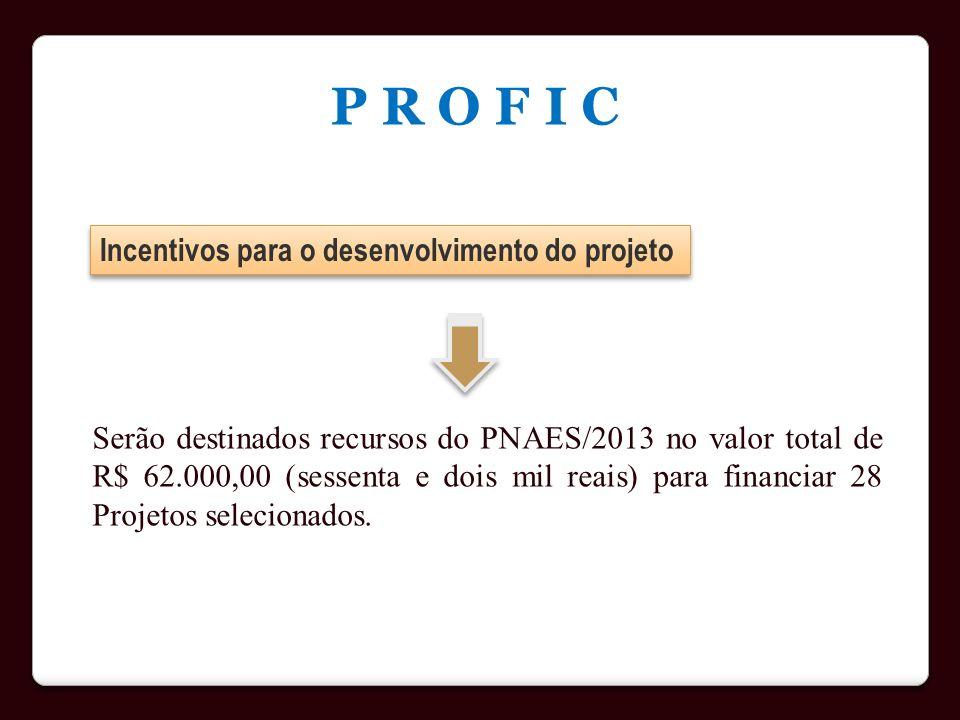 Incentivos para o desenvolvimento do projeto P R O F I C Serão destinados recursos do PNAES/2013 no valor total de R$ 62.000,00 (sessenta e dois mil r