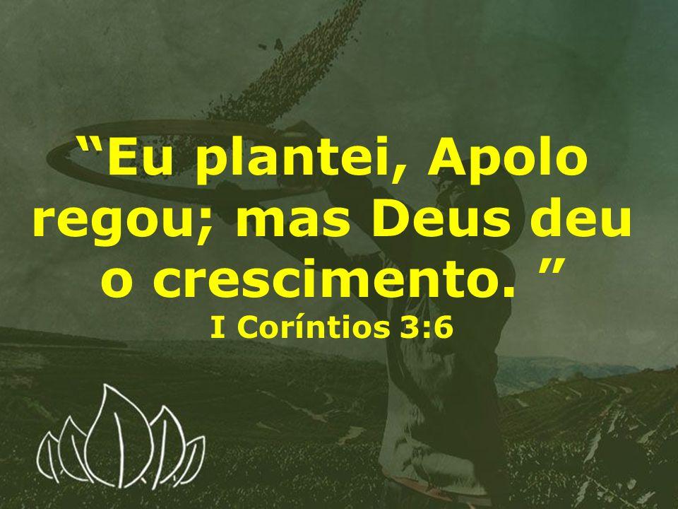 Eu plantei, Apolo regou; mas Deus deu o crescimento. I Coríntios 3:6