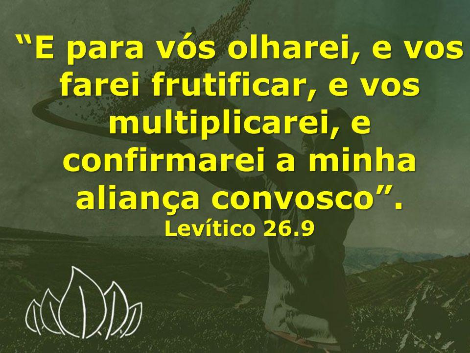 E para vós olharei, e vos farei frutificar, e vos multiplicarei, e confirmarei a minha aliança convosco. Levítico 26.9