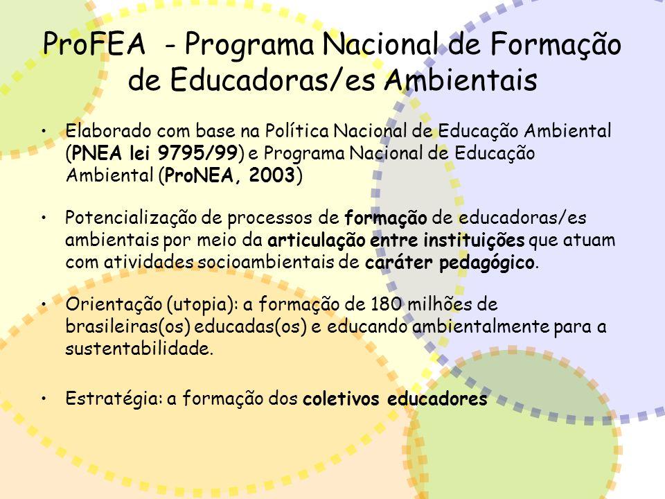 ProFEA - Programa Nacional de Formação de Educadoras/es Ambientais Elaborado com base na Política Nacional de Educação Ambiental (PNEA lei 9795/99) e