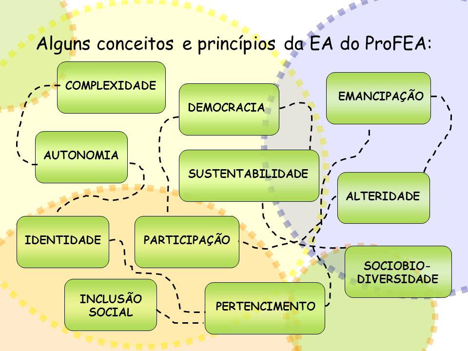 Alguns conceitos e princípios da EA do ProFEA: AUTONOMIAALTERIDADECOMPLEXIDADEDEMOCRACIAIDENTIDADE INCLUSÃO SOCIAL PARTICIPAÇÃOPERTENCIMENTO SOCIOBIO-