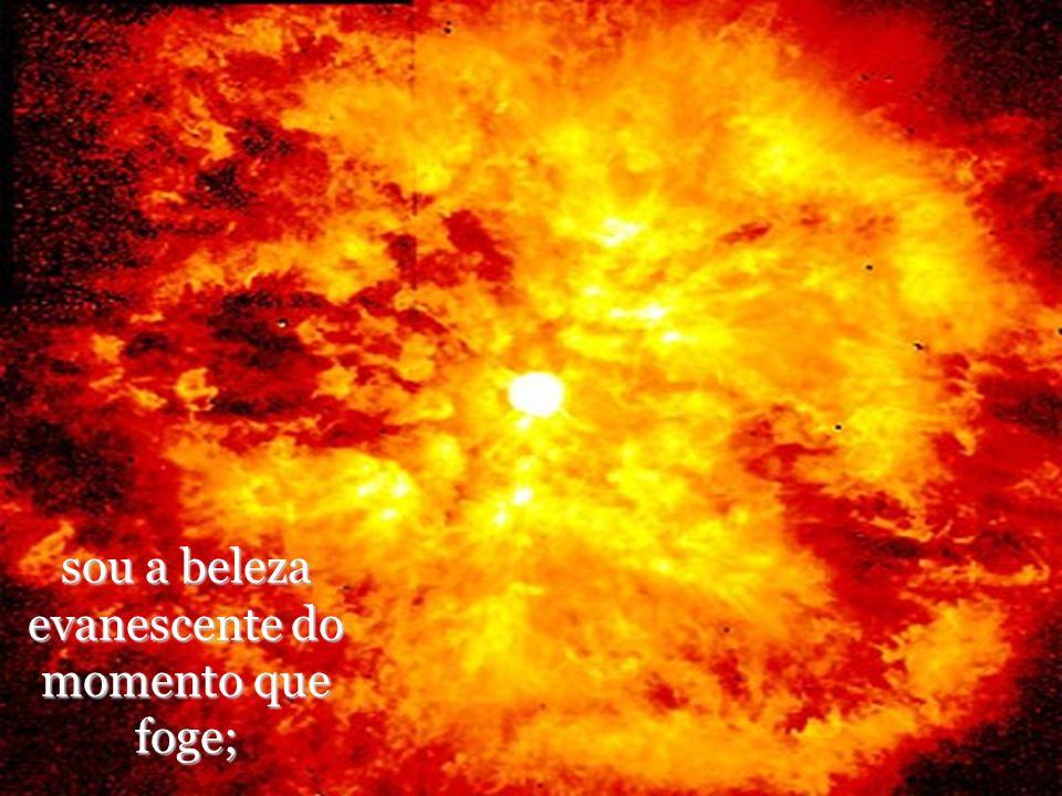 sou o calor do primeiro raio de sol da primavera, que traz a vida e sou o vendaval que traz a morte;