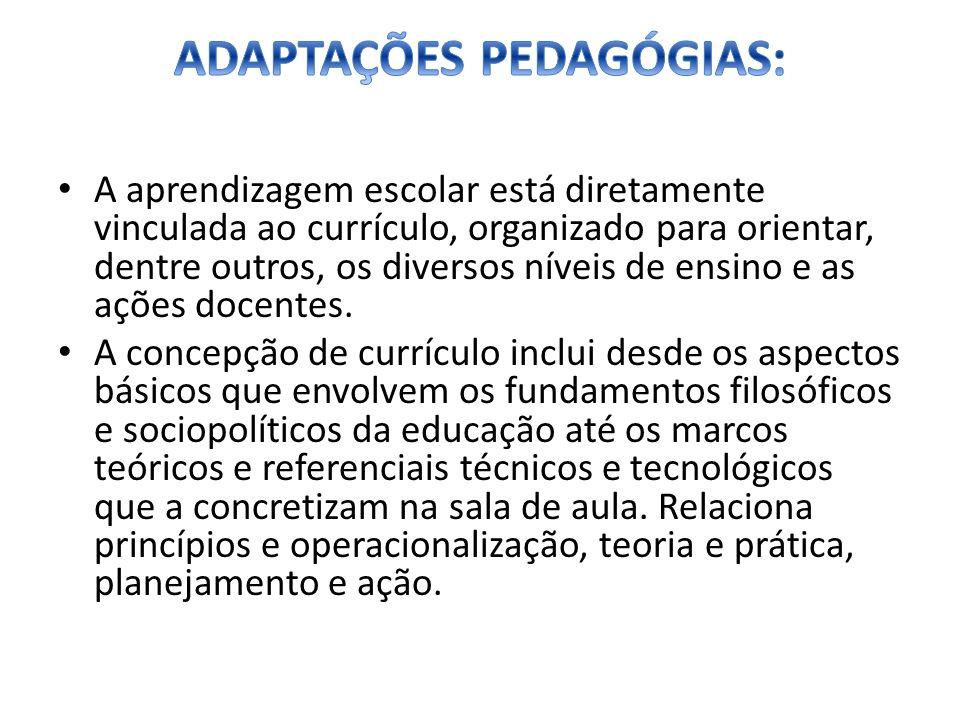 A aprendizagem escolar está diretamente vinculada ao currículo, organizado para orientar, dentre outros, os diversos níveis de ensino e as ações docen