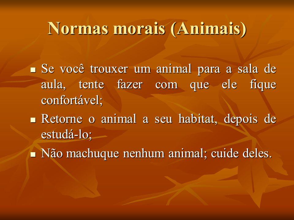 Normas morais (Animais) Se você trouxer um animal para a sala de aula, tente fazer com que ele fique confortável; Se você trouxer um animal para a sal