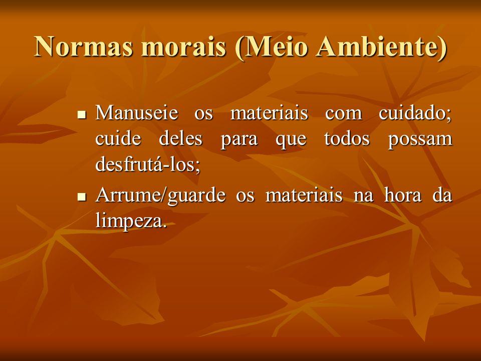 Normas morais (Meio Ambiente) Manuseie os materiais com cuidado; cuide deles para que todos possam desfrutá-los; Manuseie os materiais com cuidado; cu