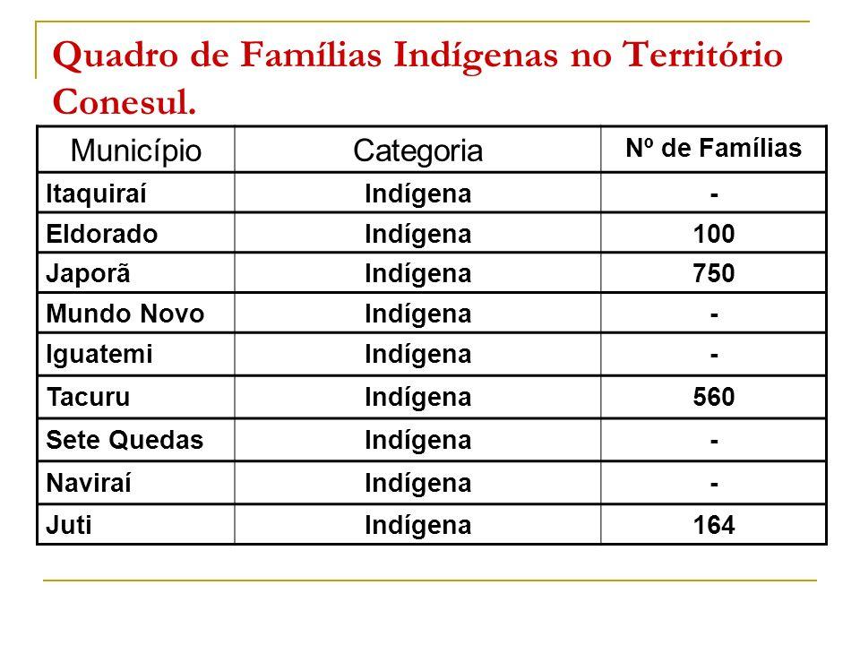 Quadro de Famílias Indígenas no Território Conesul. MunicípioCategoria Nº de Famílias ItaquiraíIndígena- EldoradoIndígena100 JaporãIndígena750 Mundo N