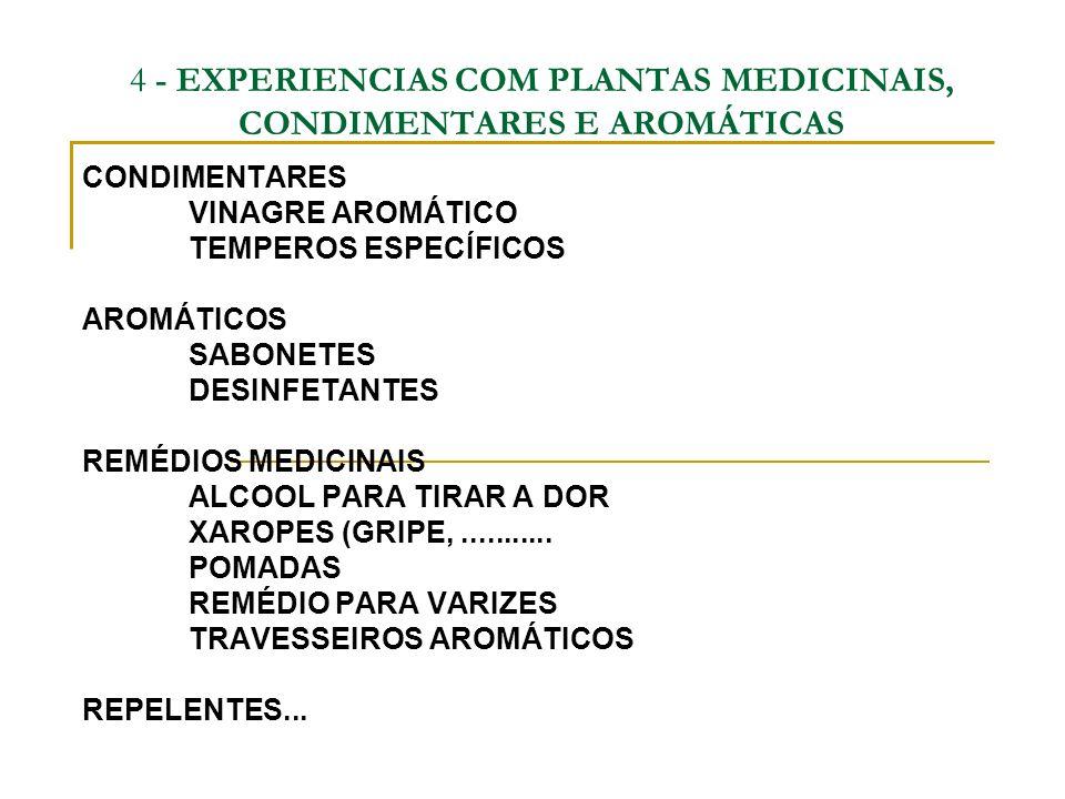 4 - EXPERIENCIAS COM PLANTAS MEDICINAIS, CONDIMENTARES E AROMÁTICAS CONDIMENTARES VINAGRE AROMÁTICO TEMPEROS ESPECÍFICOS AROMÁTICOS SABONETES DESINFET