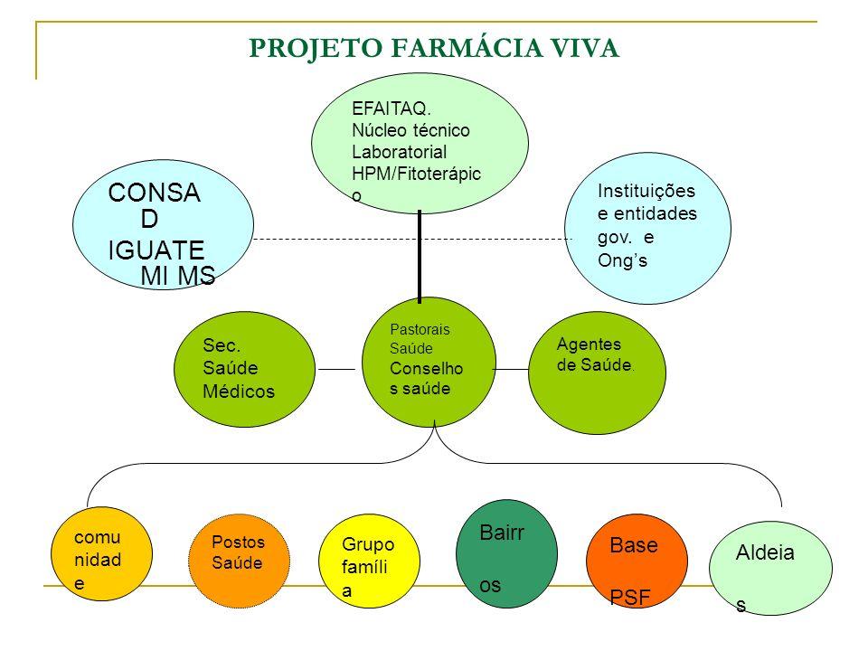 PROJETO FARMÁCIA VIVA EFAITAQ. Núcleo técnico Laboratorial HPM/Fitoterápic o CONSA D IGUATE MI MS Instituições e entidades gov. e Ongs Pastorais Saúde