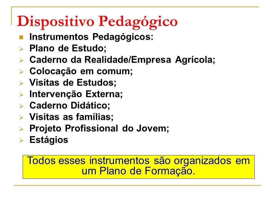 Dispositivo Pedagógico Instrumentos Pedagógicos: Plano de Estudo; Caderno da Realidade/Empresa Agrícola; Colocação em comum; Visitas de Estudos; Inter