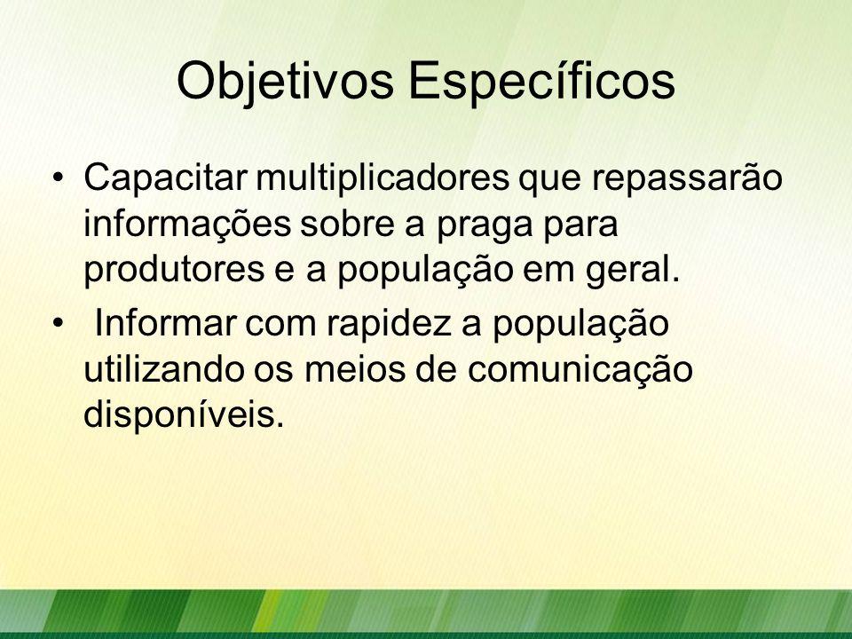 Objetivos Específicos Capacitar multiplicadores que repassarão informações sobre a praga para produtores e a população em geral. Informar com rapidez