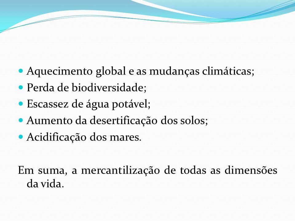 Aquecimento global e as mudanças climáticas; Perda de biodiversidade; Escassez de água potável; Aumento da desertificação dos solos; Acidificação dos