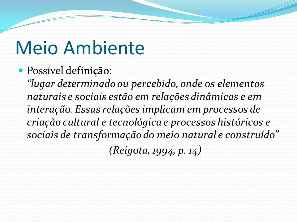 Meio Ambiente Possível definição: lugar determinado ou percebido, onde os elementos naturais e sociais estão em relações dinâmicas e em interação. Ess