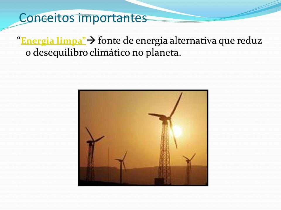 Conceitos importantes Energia limpa fonte de energia alternativa que reduz o desequilibro climático no planeta. Energia limpa