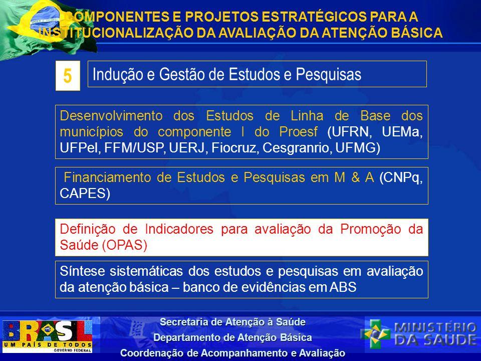 Secretaria de Atenção à Saúde Departamento de Atenção Básica Coordenação de Acompanhamento e Avaliação Indução e Gestão de Estudos e Pesquisas 5 Desen