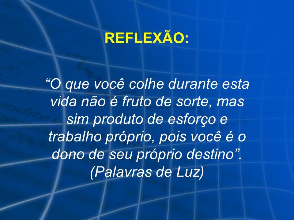 REFLEXÃO: O que você colhe durante esta vida não é fruto de sorte, mas sim produto de esforço e trabalho próprio, pois você é o dono de seu próprio de