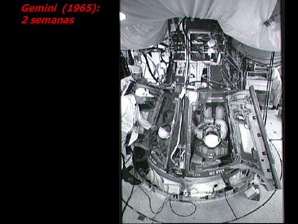 Gemini (1965): 2 semanas