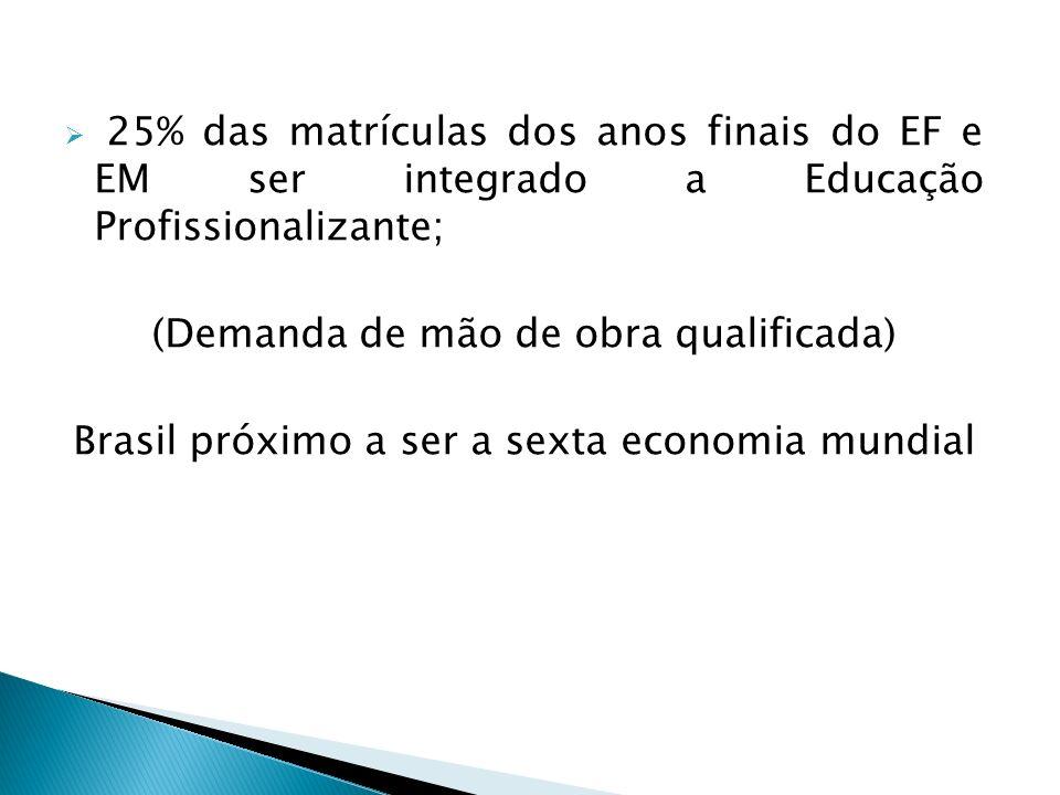 25% das matrículas dos anos finais do EF e EM ser integrado a Educação Profissionalizante; (Demanda de mão de obra qualificada) Brasil próximo a ser a