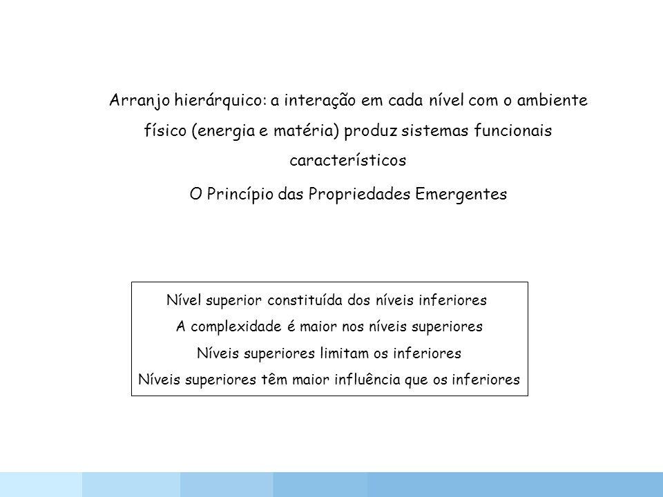 Arranjo hierárquico: a interação em cada nível com o ambiente físico (energia e matéria) produz sistemas funcionais característicos O Princípio das Pr
