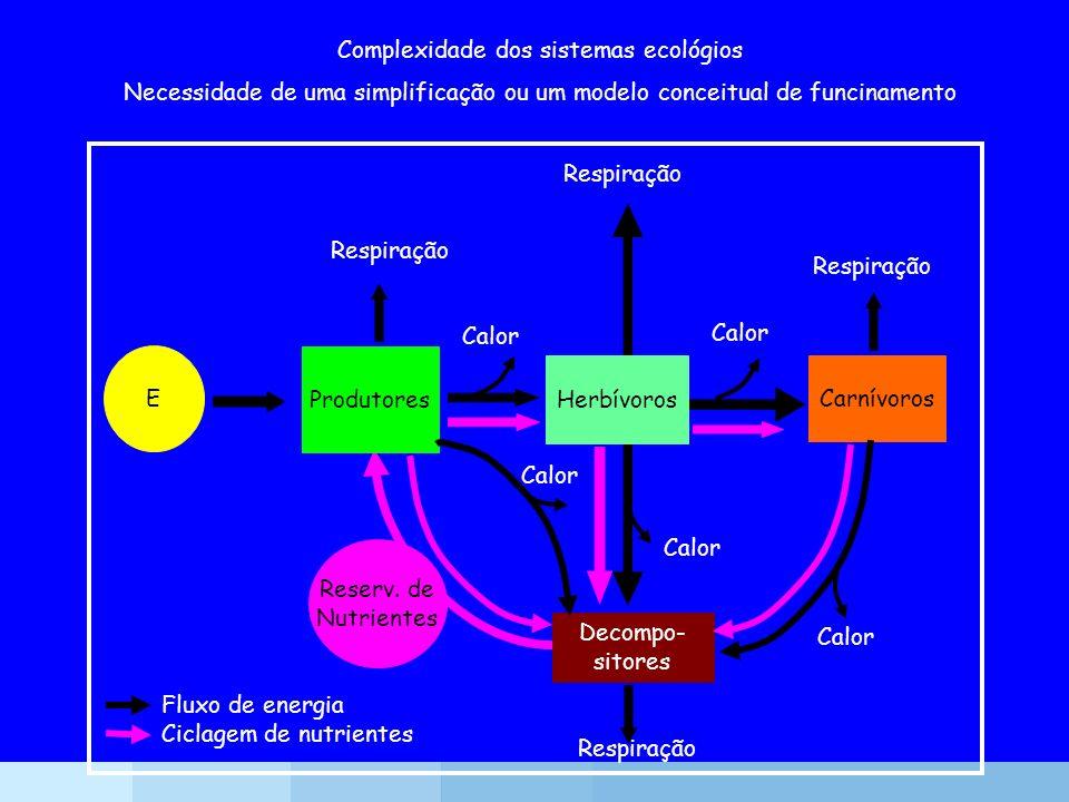 Complexidade dos sistemas ecológios Necessidade de uma simplificação ou um modelo conceitual de funcinamento Herbívoros Carnívoros E Produtores Decomp