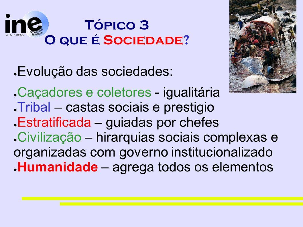 Tópico 3 O que é Sociedade? Evolução das sociedades: Caçadores e coletores - igualitária Tribal – castas sociais e prestigio Estratificada – guiadas p