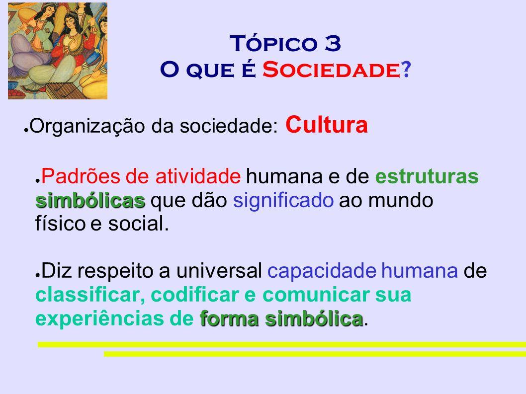 Tópico 3 O que é Sociedade? Organização da sociedade: Cultura simbólicas Padrões de atividade humana e de estruturas simbólicas que dão significado ao