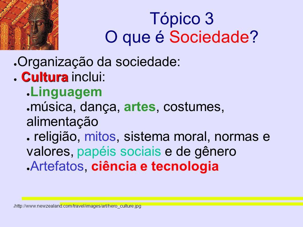 Tópico 3 O que é Sociedade? Organização da sociedade: Cultura Cultura inclui: Linguagem música, dança, artes, costumes, alimentação religião, mitos, s