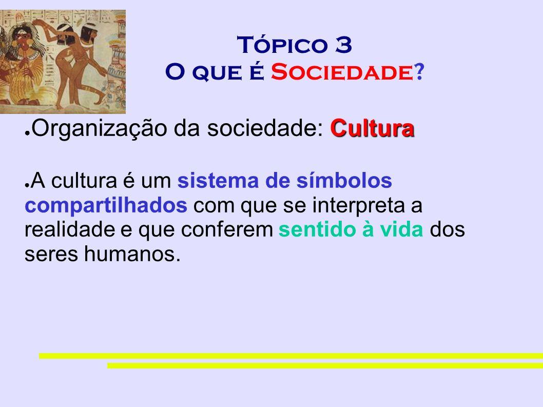 Tópico 3 O que é Sociedade? Cultura Organização da sociedade: Cultura A cultura é um sistema de símbolos compartilhados com que se interpreta a realid