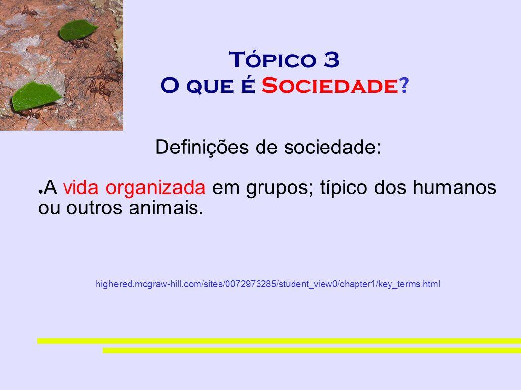 Tópico 3 O que é Sociedade? Definições de sociedade: A vida organizada em grupos; típico dos humanos ou outros animais. highered.mcgraw-hill.com/sites