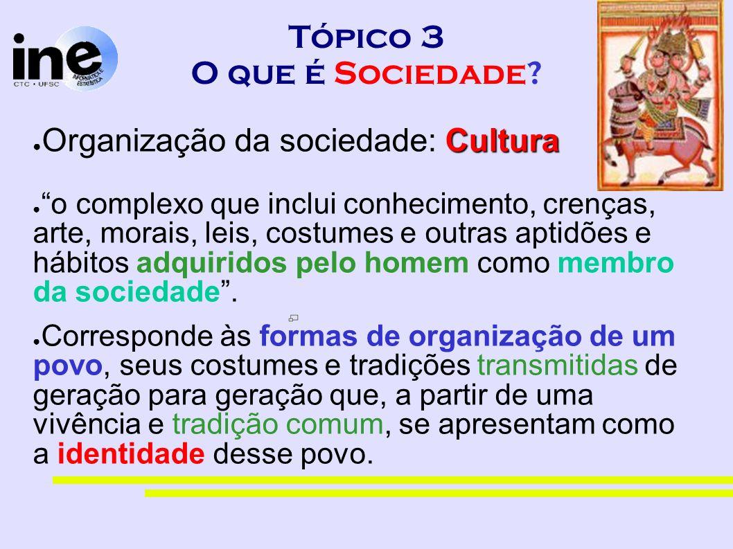 Tópico 3 O que é Sociedade? Cultura Organização da sociedade: Cultura o complexo que inclui conhecimento, crenças, arte, morais, leis, costumes e outr