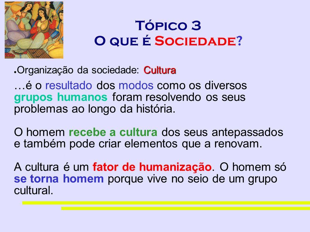 Tópico 3 O que é Sociedade? Cultura Organização da sociedade: Cultura …é o resultado dos modos como os diversos grupos humanos foram resolvendo os seu