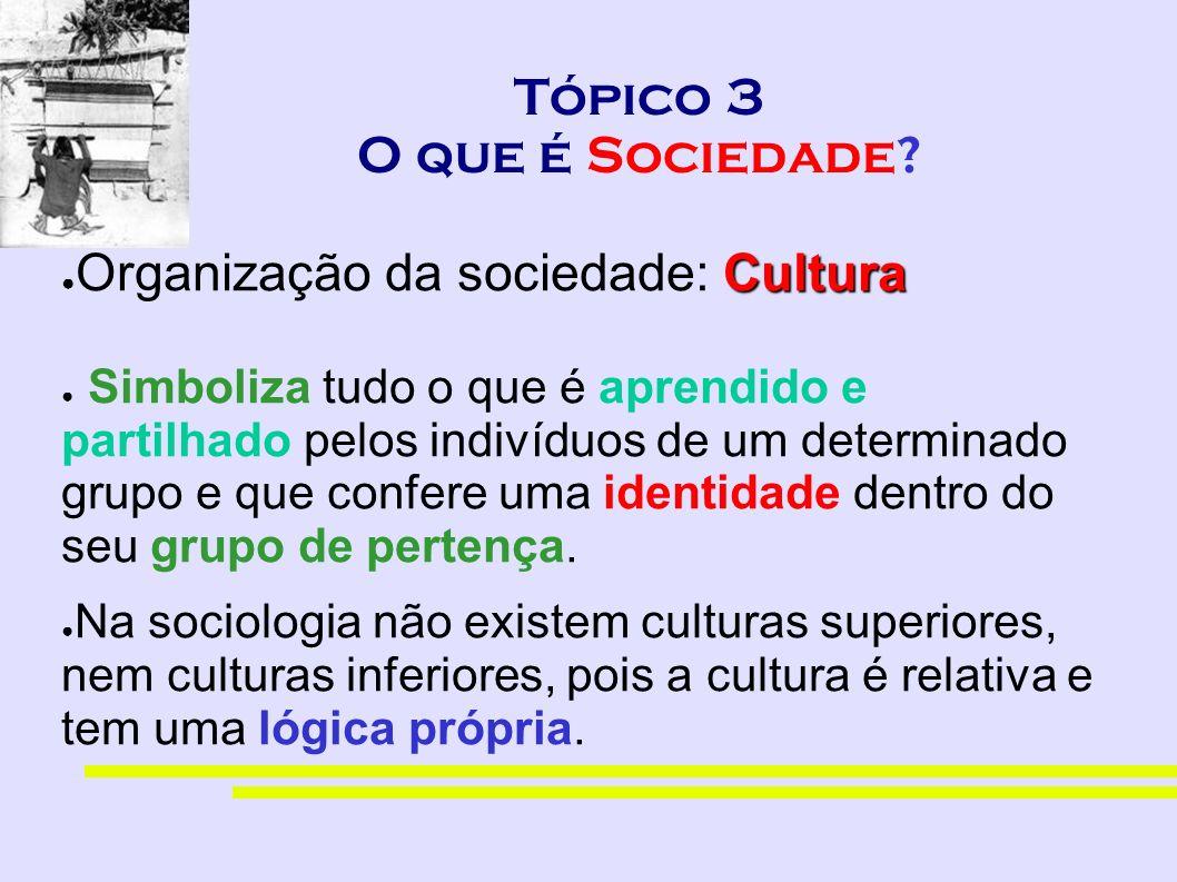 Tópico 3 O que é Sociedade? Cultura Organização da sociedade: Cultura Simboliza tudo o que é aprendido e partilhado pelos indivíduos de um determinado