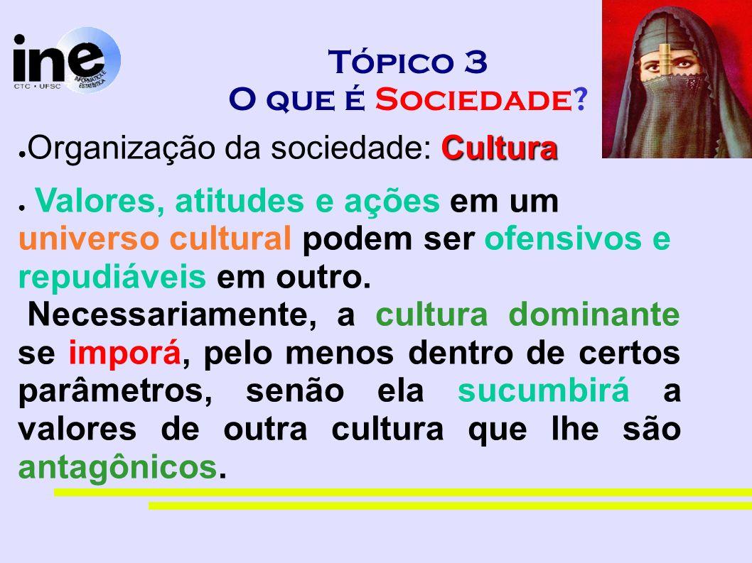 Tópico 3 O que é Sociedade? Cultura Organização da sociedade: Cultura Valores, atitudes e ações em um universo cultural podem ser ofensivos e repudiáv