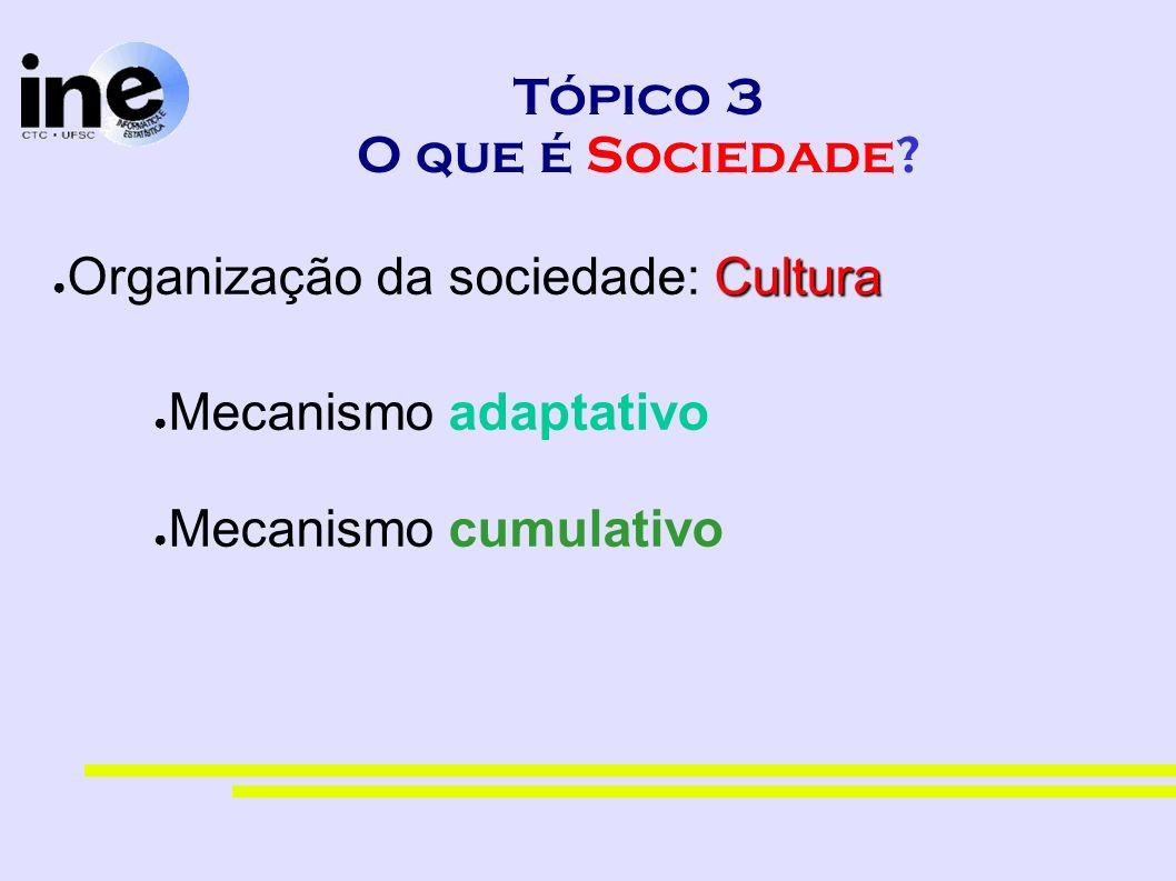 Tópico 3 O que é Sociedade? Cultura Organização da sociedade: Cultura Mecanismo adaptativo Mecanismo cumulativo
