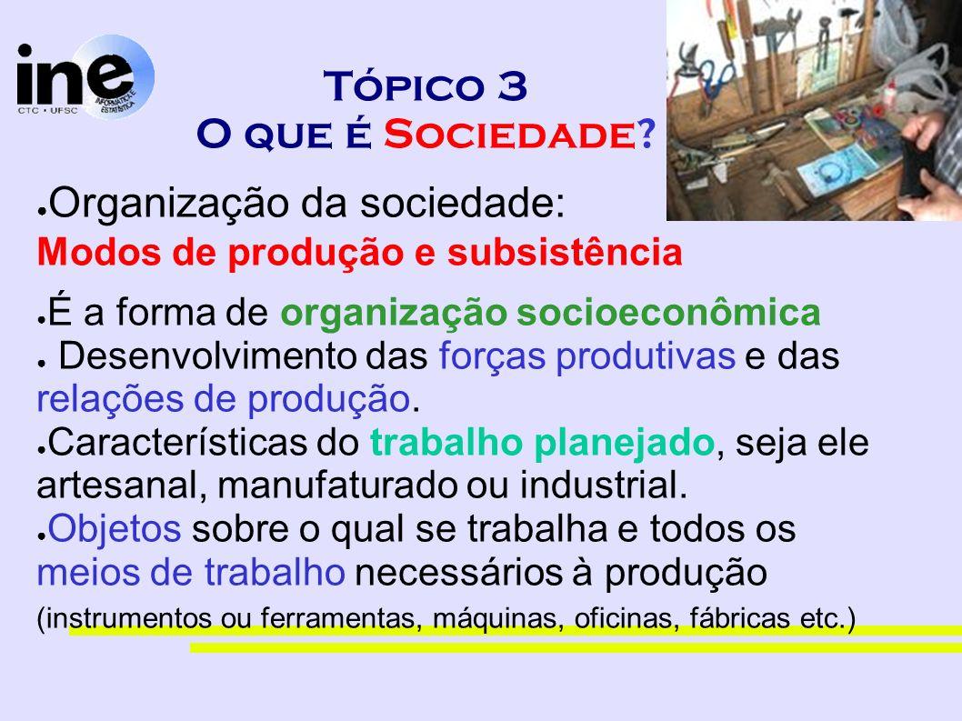 Tópico 3 O que é Sociedade? Organização da sociedade: Modos de produção e subsistência É a forma de organização socioeconômica Desenvolvimento das for