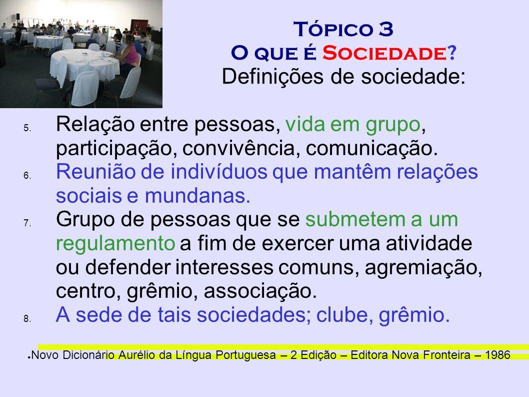 Tópico 3 O que é Sociedade? Definições de sociedade: 5. Relação entre pessoas, vida em grupo, participação, convivência, comunicação. 6. Reunião de in