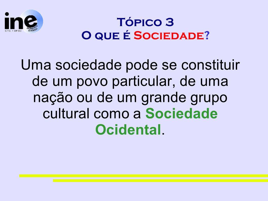 Tópico 3 O que é Sociedade? Uma sociedade pode se constituir de um povo particular, de uma nação ou de um grande grupo cultural como a Sociedade Ocide