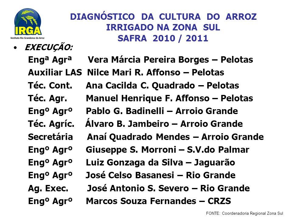 DIAGNÓSTICO DA CULTURA DO ARROZ IRRIGADO NA ZONA SUL SAFRA 2010 / 2011 EXECUÇÃO: Engª Agrª Vera Márcia Pereira Borges – Pelotas Auxiliar LAS Nilce Mari R.