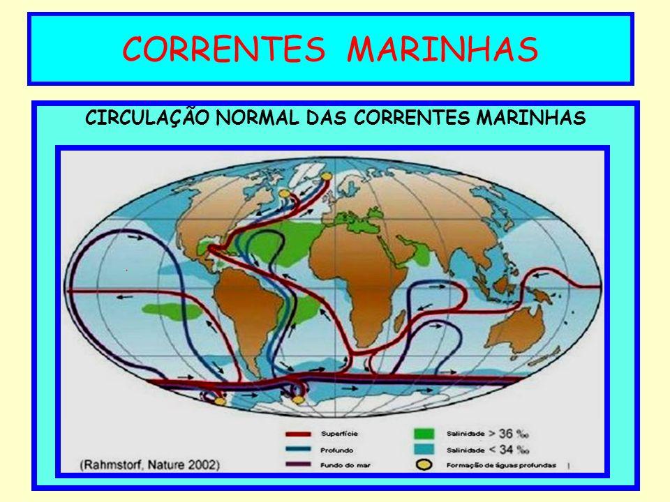 CIRCULAÇÃO NORMAL DAS CORRENTES MARINHAS CORRENTES MARINHAS