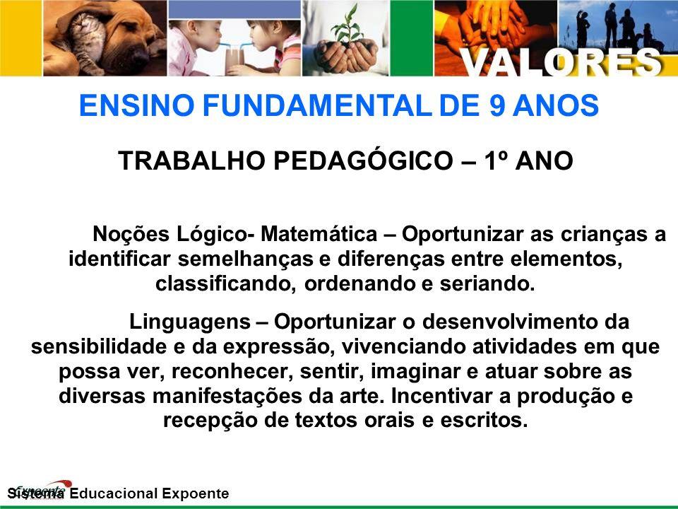 TRABALHO PEDAGÓGICO – 1º ANO Noções Lógico- Matemática – Oportunizar as crianças a identificar semelhanças e diferenças entre elementos, classificando