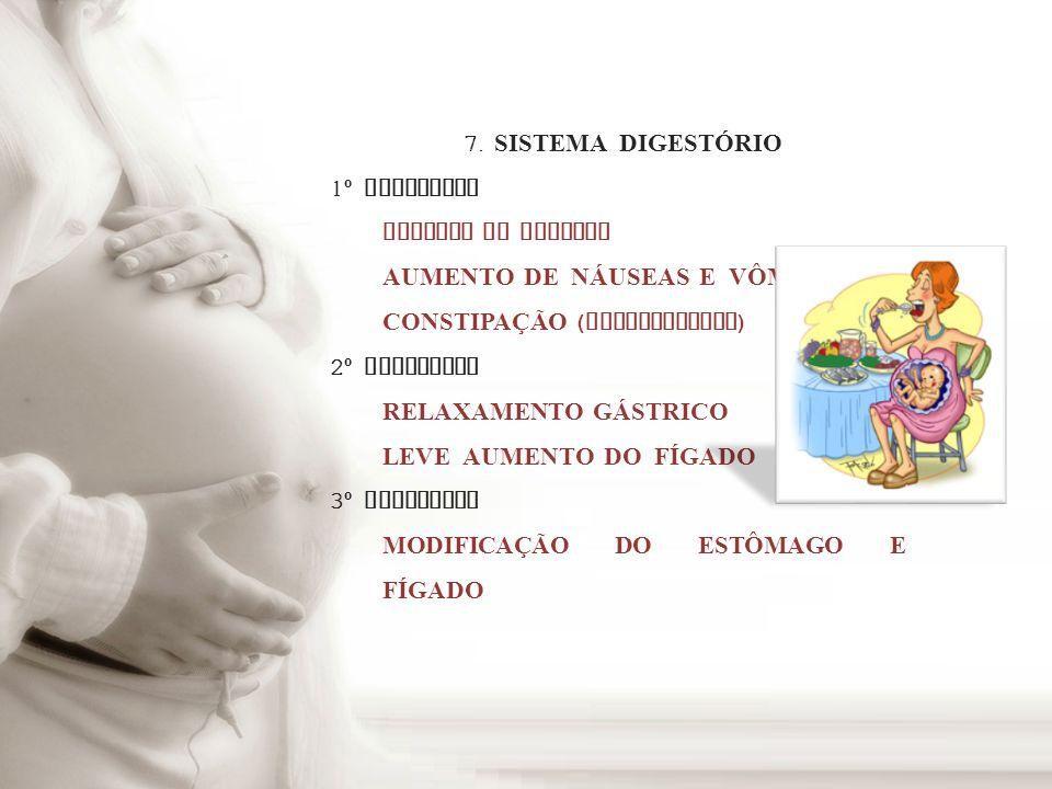 7. SISTEMA DIGEST Ó RIO 1 º TRIMESTRE AUMENTO DO APETITE AUMENTO DE NÁUSEAS E V Ô MITOS CONSTIPA Ç ÃO ( PROGESTERONA ) 2 º TRIMESTRE RELAXAMENTO GÁSTR