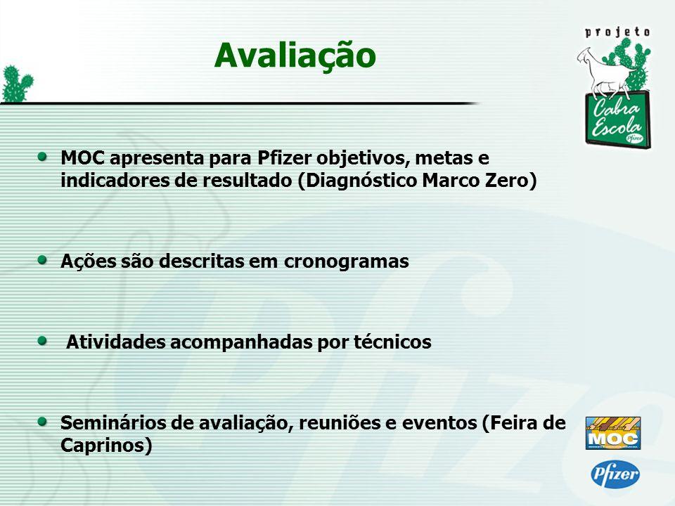 MOC apresenta para Pfizer objetivos, metas e indicadores de resultado (Diagnóstico Marco Zero) Ações são descritas em cronogramas Atividades acompanha