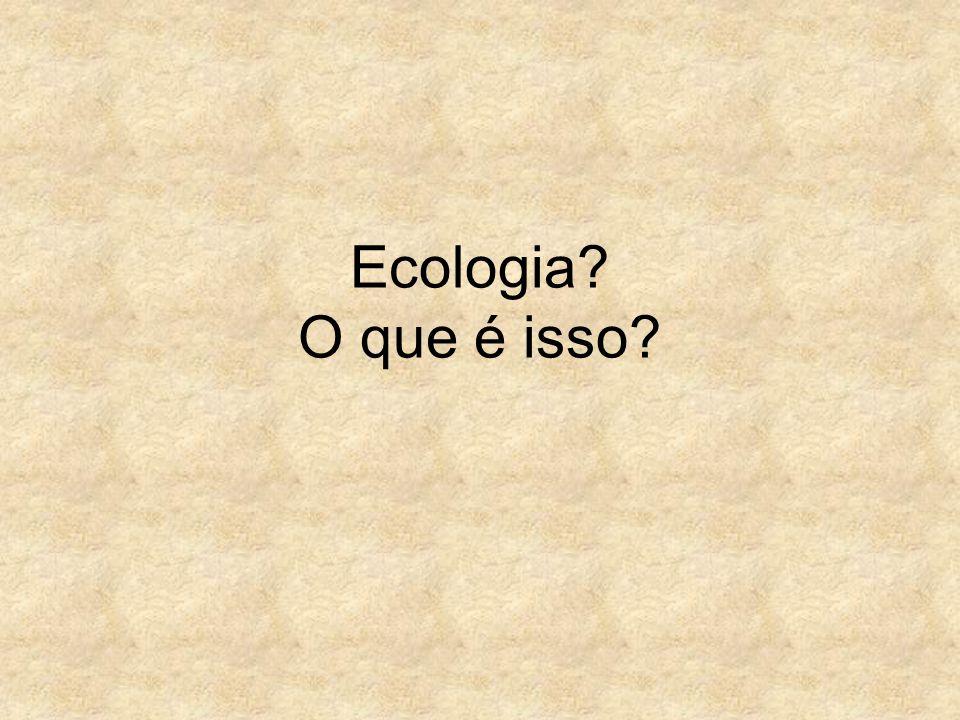 Ecologia? O que é isso?