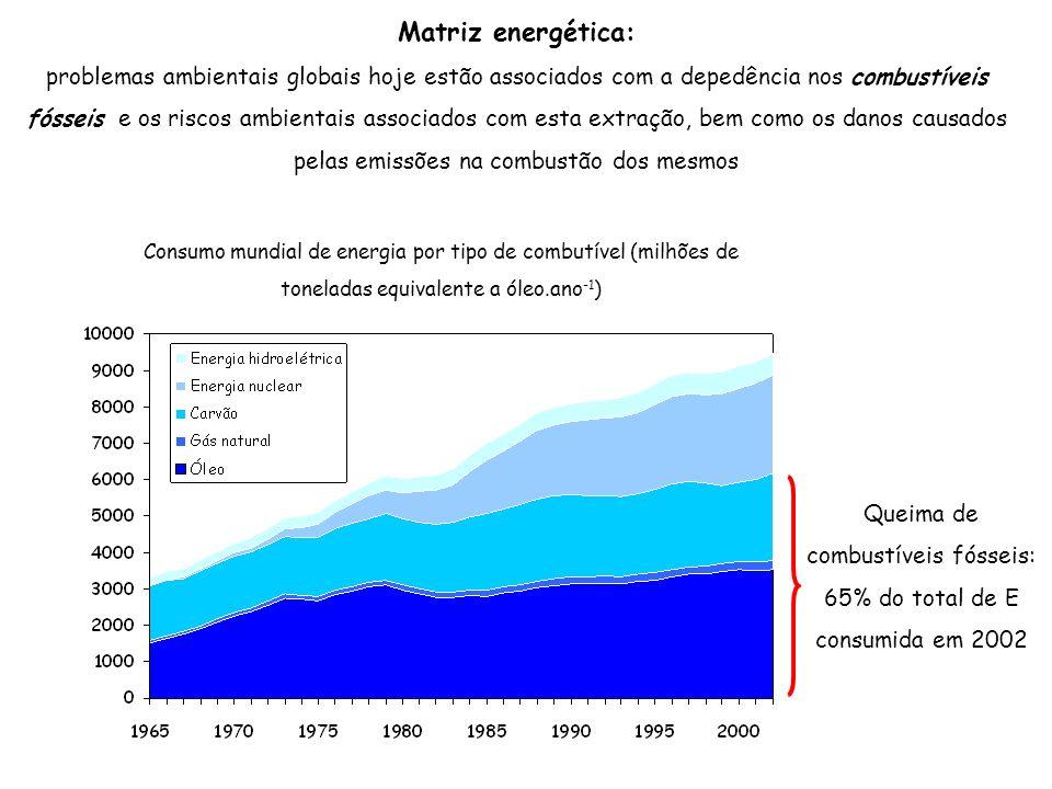 Matriz energética: problemas ambientais globais hoje estão associados com a depedência nos combustíveis fósseis e os riscos ambientais associados com