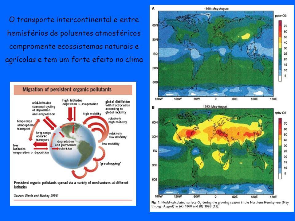 O transporte intercontinental e entre hemisférios de poluentes atmosféricos compromente ecossistemas naturais e agrícolas e tem um forte efeito no cli