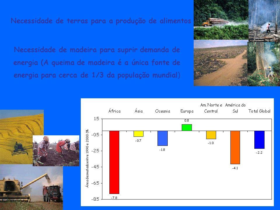 Necessidade de madeira para suprir demanda de energia (A queima de madeira é a única fonte de energia para cerca de 1/3 da população mundial) Necessid